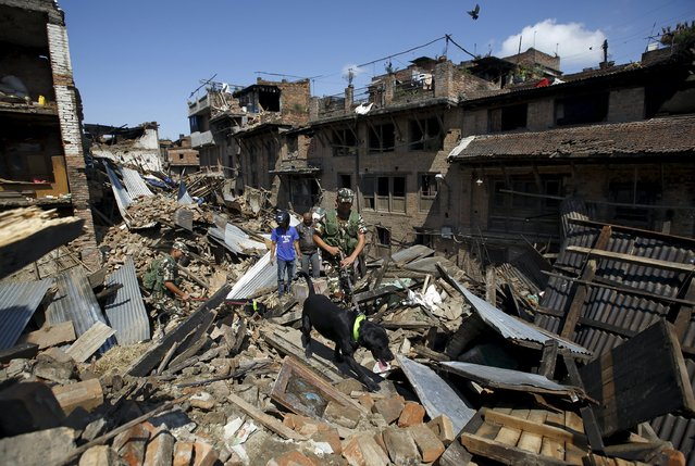Nepalese army personnel and a sniffer dog search for victims amidst the rubble of collapsed houses after Saturday's earthquake in Bhaktapur, Nepal April 27, 2015. (Photo by Navesh Chitrakar/Reuters)