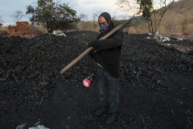 A labourer works at a traditional charcoal factory at a village in Nagarote town, Nicaragua, June 2, 2015. Around 300 families live off the sale of charcoal in this area located in the dry corridor of Nicaragua. Friday marks World Environment Day. Picture taken June 2, 2015. REUTERS/Oswaldo Rivas