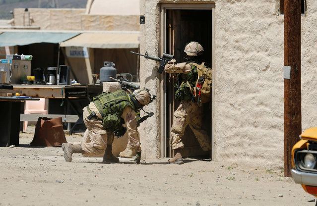 Canadian soldiers from the Royal 22nd Regiment look for cover during a non-combative extraction operation in a simulated village as part of Rim of the Pacific (RIMPAC) 2016 exercise held at Camp Pendleton, California United States, July 11, 2016. (Photo by Mike Blake/Reuters)