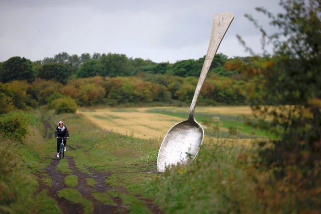 Eat For England, a 15 ft Spoon created by artist Bob Budd sits between two farmers fields on July 20, 2020 in Cramlington, United Kingdom. The scupture was commissioned in 2006 as part of a National Lottery funded art trail in Northumberland. (Photo by Christopher Furlong/Getty Images)