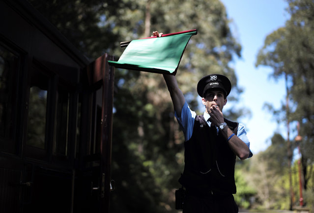 Puffing Billy railway guard Dom Franssen blows a whistle and holds up a flag signalling a train to depart Lakeside station near Melbourne, October 20, 2014. (Photo by Jason Reed/Reuters)