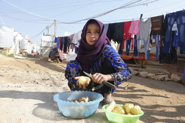 A Syrian refugee peels potatoes at a refugee camp in Zahle in the Bekaa valley November 18, 2014. (Photo by Mohamed Azakir/Reuters)