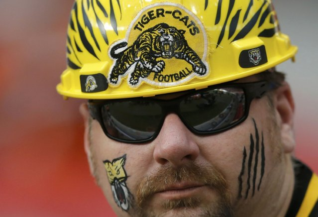 A Hamilton Tiger Cats fan awaits the start of the CFL's 102nd Grey Cup football championship between the Calgary Stampeders and the Tiger Cats in Vancouver, British Columbia, November 30, 2014. (Photo by Todd Korol/Reuters)