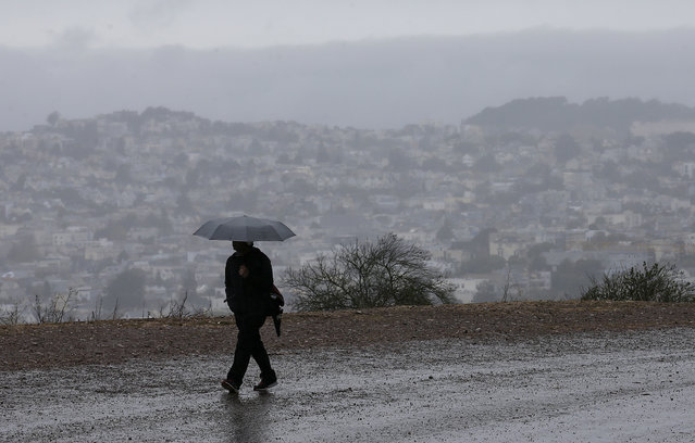 A man carries an umbrella while walking along a road on Bernal Heights Hill in San Francisco, Friday, October 14, 2016. (Photo by Jeff Chiu/AP Photo)