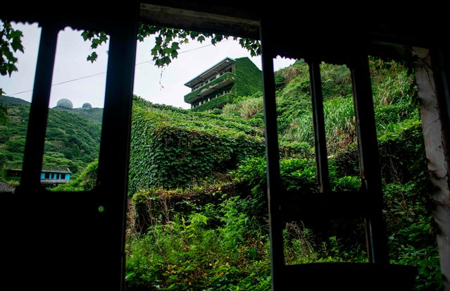 This picture taken on May 31, 2018 shows abandoned village houses covered with overgrown vegetation in Houtouwan on Shengshan island, China' s eastern Zhejiang province. (Photo by Johannes Eisele/AFP Photo)