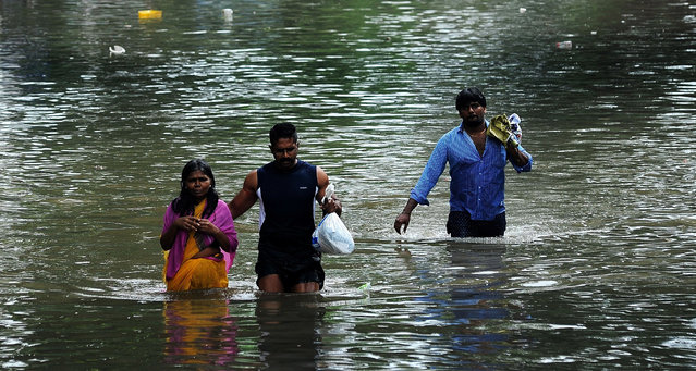 A man leads an elderly woman past a flooded street in a residential area in Chennai, in the southern Indian state of Tamil Nadu, Wednesday, December 2, 2015. Weeks of torrential rains have forced the airport in the state capital Chennai to close and have cut off several roads and highways, leaving tens of thousands of people stranded in their homes, government officials said Wednesday. (Photo by AP Photo)