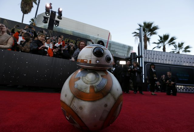 "Droid BB-8 arrives at the world premiere of the film ""Star Wars: The Force Awakens"" in Hollywood, California, December 14, 2015. (Photo by Mario Anzuoni/Reuters)"