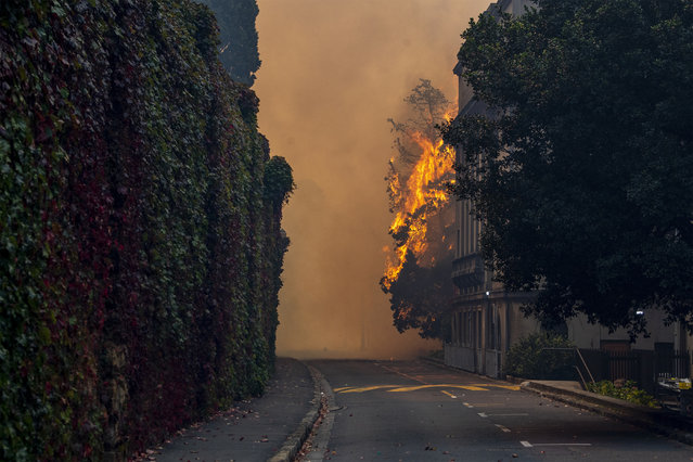 A building burns on the campus of the University of Cape, South Africa, Sunday, April 18, 2021. A wildfire raging on the slopes of the mountain forced the evacuation of students from the University. (Photo by AP Photo/Stringer)