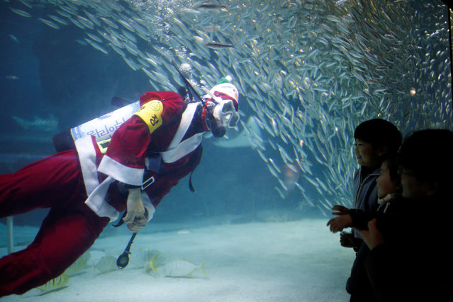 """A diver dressed in a Santa Claus costume swims with sardines during a promotional event for Christmas """"Sardines Feeding Show with Santa Claus"""" at the Coex Aquarium in Seoul, South Korea, December 17, 2016. (Photo by Kim Hong-Ji/Reuters)"""