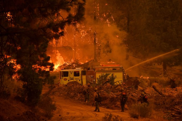 Firefighters work to control the Windy Fire as trees burn in the Sequoia National Forest near Johnsondale, California on September 22, 2021. (Photo by Patrick T. Fallon/AFP Photo)