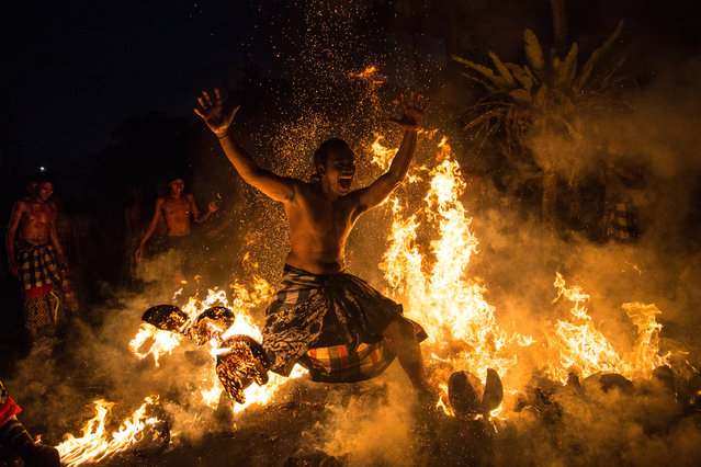 "A Balinese man dances on the fire during the ""Mesabatan Api"" ritual ahead of Nyepi Day on March 20, 2015 in Gianyar, Bali, Indonesia. Mesabatan Api is held annually a day before the Nyepi Day of Silence, as it symbolizes the purification of universe and human body through fire. Nyepi is a Hindu celebration observed every New Year according to the Balinese calendar. (Photo by Agung Parameswara/Getty Images)"