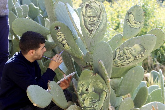 Palestinian artist Ahmad Yasin paints on a cactus fruits tree at his house garden in the West Bank village of Aseera Ashmaliya near Nablus March 31, 2016. (Photo by Abed Omar Qusini/Reuters)