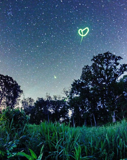 A photographer has shot this stunning series of images using time-lapse photography to portray the beauty of fireflies in a whole new light. (Photo by Caters News)
