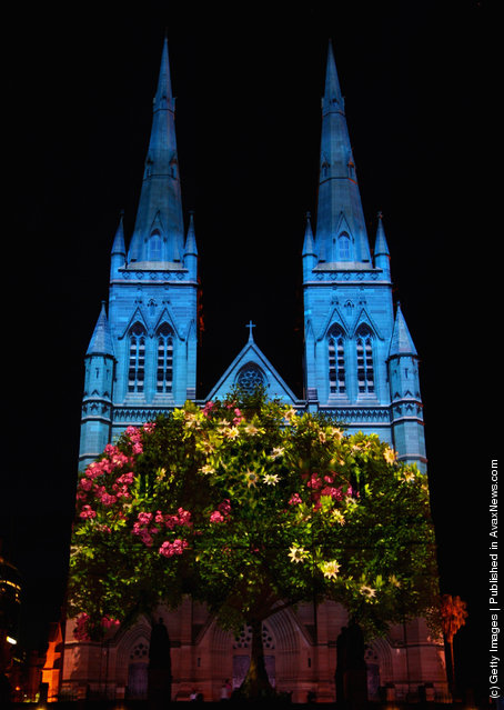 The faзade of St Mary's Cathedral is lit up during the Lights of Christmas celebration