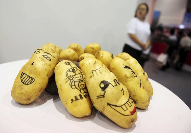 Potatoes painted with faces and cartoons are seen on display during the World Potato Congress on the outskirts of Beijing, China, July 28, 2015. Once seen as food for the poor, the humble potato is being pushed in China as a tasty, nutritious part of any meal as the world's most populous country struggles with water shortages and looks for alternatives to the traditional rice and noodles. (Photo by Reuters/Stringer)