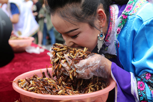 A woman participates in an insect-eating competition at a scenic spot in Lijiang, Yunnan province, China June 25, 2017. (Photo by Reuters/Stringer)