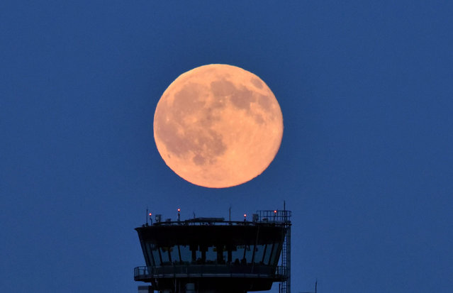 A picture made available on 21 June 2016 shows a full moon with a slight reddish tint near Schoenefeld, Germany, 20 June 2016. The natural occurance of the June full moon is called the Strawberry Moon. (Photo by Ralf Hirschberger/EPA)