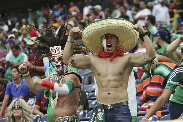 Fans of Mexico cheer for their team before a group C match between Mexico and Venezuela at NRG Stadium as part of Copa America Centenario US 2016 on June 13, 2016 in Houston, Texas, US. (Photo by Omar Vega/LatinContent/Getty Images)