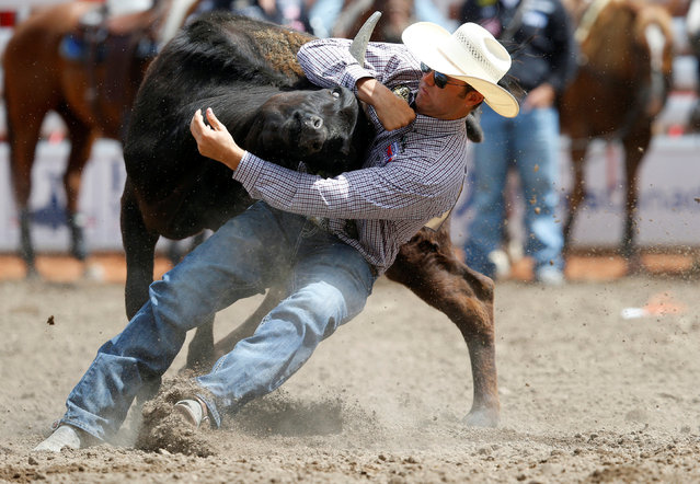 Tyler Waguespack of Gonzales, Louisiana, wrestles a steer in the steer wrestling event during the Calgary Stampede rodeo in Calgary, Alberta, Canada July 8, 2016. (Photo by Todd Korol/Reuters)
