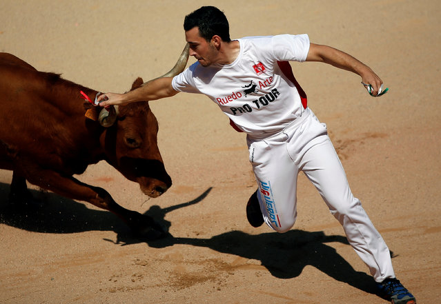 """A """"recortador"""" puts a ring on a wild cow's horn during the San Fermin festival in Pamplona, northern Spain, July 10, 2016. (Photo by Susana Vera/Reuters)"""