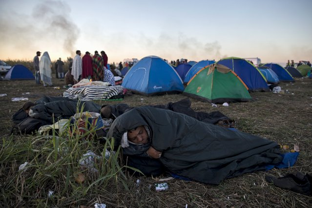 A migrant rests in a sleeping bag in a makeshift camp at a collection point in the village of Roszke, Hungary, September 7, 2015. (Photo by Marko Djurica/Reuters)
