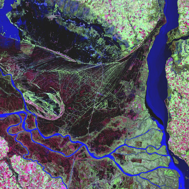 Paraná River Delta. The Paraná River delta is a huge forested marshland about 30 km northeast of Buenos Aires, Argentina. The area is a very popular tour destination. Guided boat tours can be taken into this vast labyrinth of marsh and trees. The Paraná River delta is also one of the world's greatest bird-watching destinations. This image highlights the striking contrast between dense forest and wetland marshes, and the deep blue ribbon of the Paraná River. Image taken May 26, 2000, by Landsat 7. (Photo by NASA/GSFC/USGS EROS Data Center)