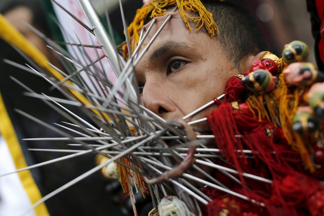 A devotee of the Chinese Bang Neow shrine with spikes pierced at his cheeks and lips pauses during a procession celebrating the annual vegetarian festival in Phuket, Thailand October 18, 2015. (Photo by Jorge Silva/Reuters)