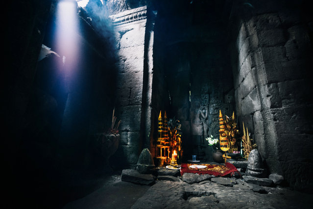 A shrine in the Ta Prohm temple. (Photo by Alex Teuscher/Caters News)