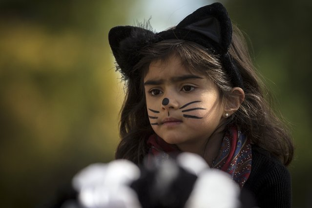 A child dressed as a cat takes part in the Children's Halloween day parade at Washington Square Park in the Manhattan borough of New York October 31, 2015. (Photo by Carlo Allegri/Reuters)
