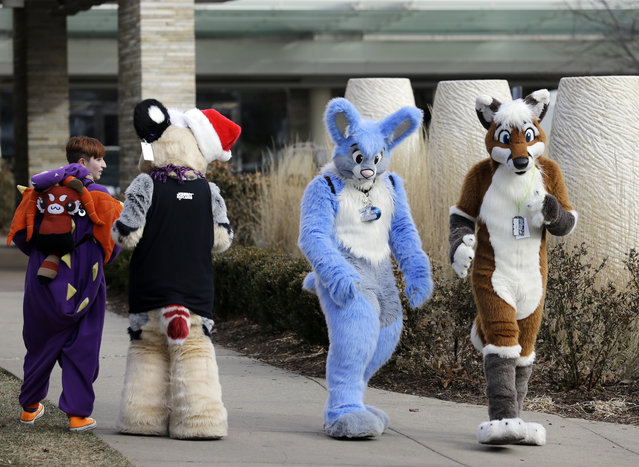 Frederic Cesbron, right and Maxim Durand, walk on the street outside the Hyatt Regency O'Hare hotel on Sunday, December 7, 2014, in Rosemont, Ill. Thousands of people were evacuated after a chlorine gas leak at the hotel hosting the 2014 Midwest FurFest convention, where attendees dress as animals to celebrate art, literature and performance, in suburban Rosemont early Sunday morning. (Photo by Nam Y. Huh/AP Photo)