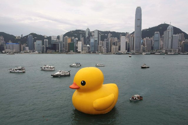 A giant Rubber Duck created by Dutch artist Florentijn Hofman is towed along Hong Kong's Victoria Habour Thursday, May 2, 2013. Since 2007 the 16.5-meter (54 feet)-tall Rubber Duck has traveled to various cites including Osaka, Sydney, Sao Paulo and Amsterdam. (Photo by Vincent Yu/AP Photo)