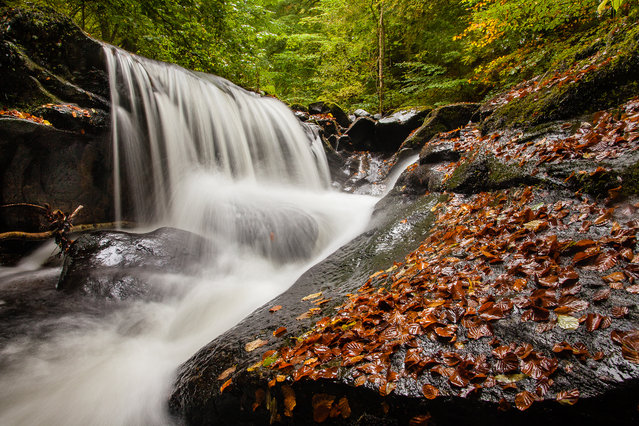 Perthshire, UK, 2016. When you consider that Perthshire is known as Big Tree Country, it's no surprise it makes the list for great places to enjoy autumn. Walks range from the Birks of Aberfeldy and the Hermitage on the Braan, to Lady Mary's Walk and the Falls of Briar. (Photo by Dougie Cunningham)