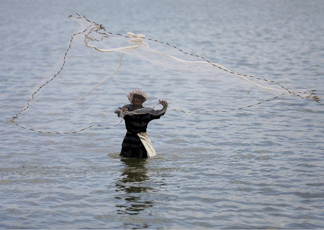 A fisherman throws his net to catch fish in a lagoon in Batticaloa November 24, 2015. (Photo by Dinuka Liyanawatte/Reuters)