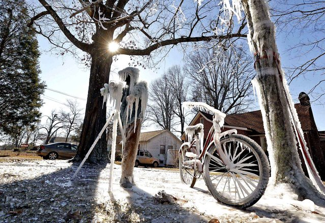 Ice forms on an depiction of Skip Baumhower standing behind a camera on a tripod on the front lawn of Baumhower's home in Tuscaloosa, Ala., Thursday, January 8, 2015. This winter's coldest weather yet plunged Alabama into a deep freeze and broke records early Thursday, with temperatures dropping into the single digits before dawn across the northern third of the state. (Photo by Michelle Lepianka Carter/AP Photo/The Tuscaloosa News)