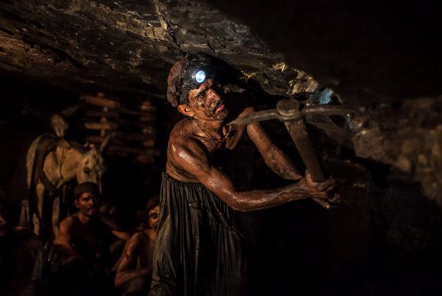Miner Mohammad Ismail, 25, digs in a coal mine in Choa Saidan Shah, Punjab province, April 29, 2014. (Photo by Sara Farid/Reuters)