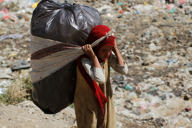 A girl carries a bag of recyclable items she collected from a landfill on the outskirts of Sanaa, Yemen November 16, 2016. (Photo by Mohamed al-Sayaghi/Reuters)