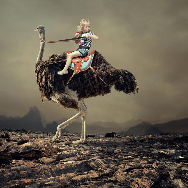 """""""Traveller"""". (Photo by Ionut Caras)"""