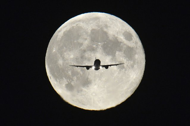 """A passenger aircraft, with the full """"Harvest Moon"""" seen behind, makes its final approach to landing at Heathrow Airport in west London, September 19, 2013. (Photo by Toby Melville/Reuters)"""