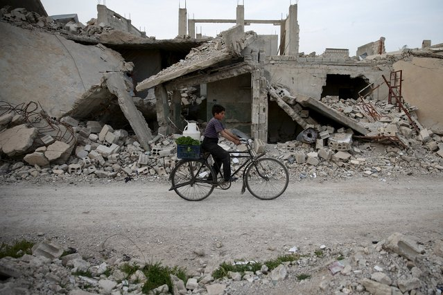 A boy rides a bicycle near rubble of damaged buildings in the rebel held besieged town of Douma, eastern Damascus suburb of Ghouta, Syria March 19, 2016. (Photo by Bassam Khabieh/Reuters)
