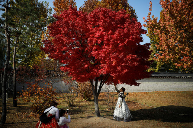 Women wearing the Korean traditional costume Hanbok take photographs on an autumn day at Gyeongbok Palace in central Seoul, South Korea, November 5, 2018. (Photo by Kim Hong-Ji/Reuters)