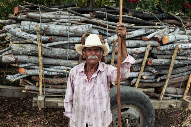 A man poses for a pictures, as he transport logs on his bull-cart to make charcoal at La Campanera village, NIcaragua, May 22, 2015. Around 300 families live off the sale of charcoal in this area located in the dry corridor of Nicaragua. Friday marks World Environment Day. Picture taken May 22, 2015. REUTERS/Oswaldo Rivas