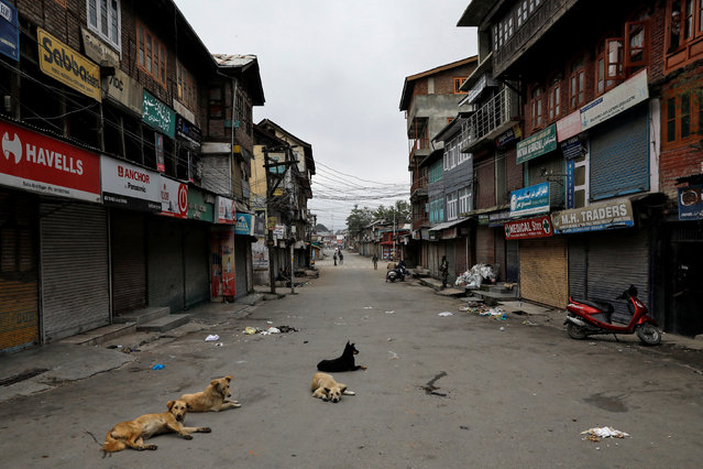 Dogs rest on an empty street during restrictions after the scrapping of the special constitutional status for Kashmir by the government, in Srinagar, August 11, 2019. (Photo by Danish Siddiqui/Reuters)