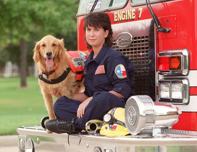This September 11, 2002, photo shows, K9 Search Specialist Denise Corliss and her search dog Bretagne in Houston, Texas. Bretagne the last known living 9/11 search dog has died in a Houston suburb at age 16. Bretagne was 2 years old when she and her handler, Corliss, were part of the Texas Task Force 1 sent to the World Trade Center site in Lower Manhattan after the terrorist attack brought down the buildings on Sept. 11, 2001. (Photo by D. Fahleson/Houston Chronicle via AP Photo)