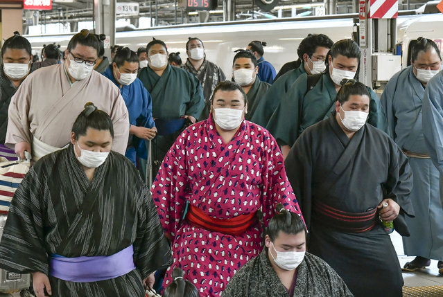 In this Sunday, February 23, 2020, photo, sumo wrestlers wearing masks arrive at Shin Osaka railway station in Osaka, western Japan. A viral outbreak that began in China has infected more than 79,000 people globally. The World Health Organization has named the illness COVID-19, referring to its origin late last year and the coronavirus that causes it. (Photo by Kyodo News via AP Photo)