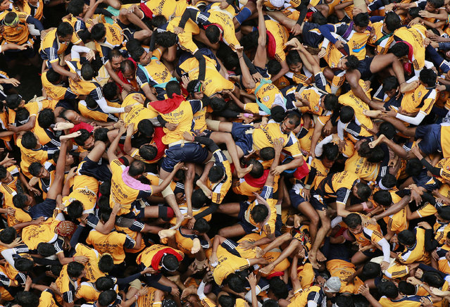 """People fall down as they try to form a human pyramid during celebrations to mark """"Janmashtami"""" in Mumbai, India, Monday, August 18, 2014. (Photo by Rafiq Maqbool/AP Photo)"""