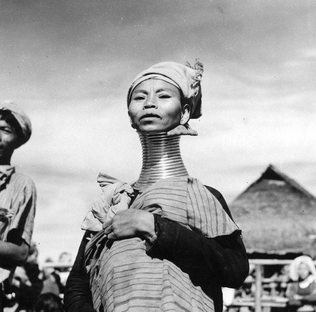 A Padaung, or Kayan woman. Originally a Mongolian tribe, the Padaung have been assimilated into the Karen group native to Mayanmar (Burma), circa 1950. The most stiking feature of these people are the brass rings fitted to the necks and limbs of women born on Wednesdays. The first neck ring is fitted when they are five or six, with successive rings fitted every two years, denoting the status of their family.  (Photo by Three Lions)