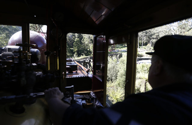 Puffing Billy steam engine driver Steve Holmes, 61, drives locomotive 12A across the Monbulk Creek trestle after leaving Belgrave station near Melbourne, October 20, 2014. (Photo by Jason Reed/Reuters)