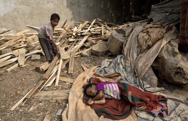 Four-year-old Manu works at a shop selling firewood as his one-and-half year old sister Tanu sleeps on the ground in Gauhati, India, Wednesday, December 10, 2014. Manu's mother works at the shop earning US$20 a month, and Manu is paid Rupees 30 (US$ 0.4) a day whenever he helps out. Malala Yousafzai of Pakistan and Kailash Satyarthi of India on Wednesday received the Nobel Peace Prize for risking their lives to fight for working to protect children from slavery, extremism and child labor at great risk to their own lives. (Photo by Anupam Nath/AP Photo)
