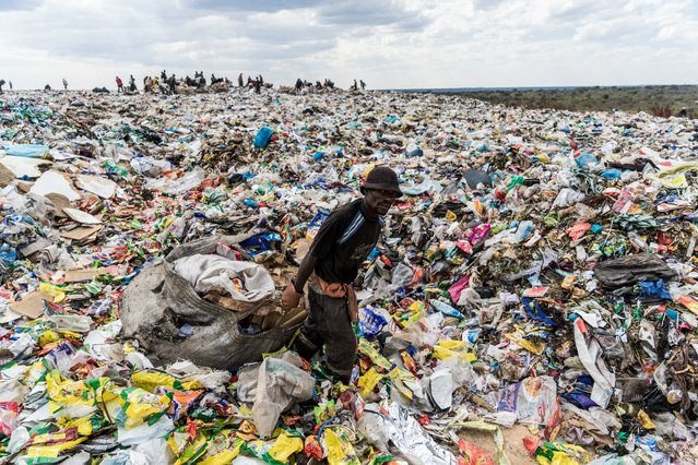 A recycler drags a huge bag of paper sorted for recycling past a heap of non-recyclable material at Richmond sanitary landfill site on 2 June 2018 in the industrial city of Bulawayo. Plastic waste remains a challenging waste management issue due to its non-biodegrable nature, if not managed properly plastic end up as litter polluting water ways, wetlands and storm drains causing flash flooding around Zimbabwe's cities and towns. Urban and rural areas are fighting the continuous battle against a scourge of plastic litter. On June 5, 2018 the United Nations mark the World Environment Day which plastic pollution is the main theme this year. (Photo by Zinyange Auntony/AFP Photo)