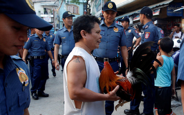 A resident holds a rooster near policemen conducting an anti-drugs operation in Mandaluyong, Metro Manila in the Philippines, November 10, 2016. (Photo by Erik De Castro/Reuters)